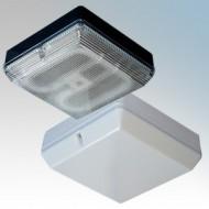 Mini-Max Square Bulkhead Luminaires IP65